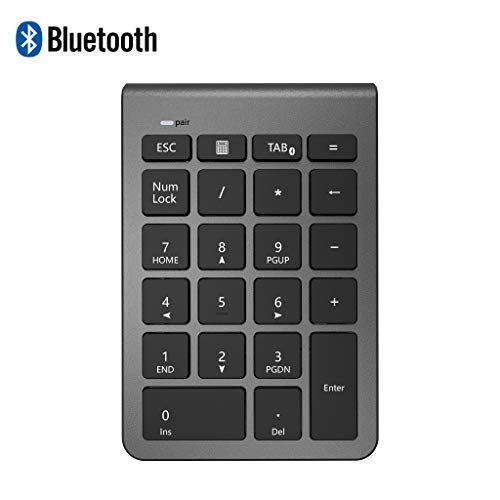 Alcey Teclado numérico inalámbrico Bluetooth, Teclado numérico 22 Teclas Bluetooth Extensiones de tecladopara Data Entry de Contabilidad financierapara Laptop, Escritorio, PC, Notebook