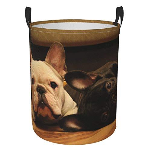 Grande cesto portabiancheria a tema Bulldog francese, borsa pieghevole per lavanderia, impermeabile, portatile, con indumenti sporchi, per camera da letto, bagno, dormitorio