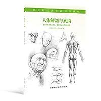 人体解剖与素描---意大利经典素描训练教程-W (意)乔瓦尼席瓦尔第,彭建辉 上海人民美术出版社