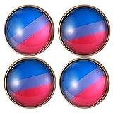 ABOOFAN Lot de 4 broches créatives couleur arc-en-ciel en cristal bronze pour corsage homosexuel Gay LGBT lesbiennes (G1-2)