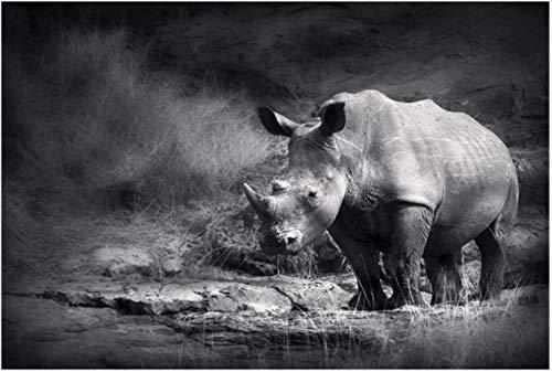 SHYJBH Pintura Moderna Rinoceronte Negro Blanco Animales Cartel Cartel e Impresiones Cuadro de Arte de Pared Cuadros para decoración de Sala de Estar 20x30cm sin Marco