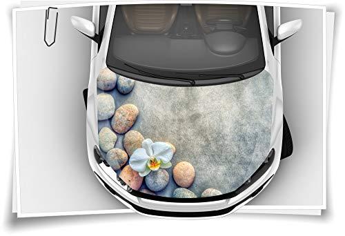 Medianlux Motorkap autosticker orchidee stenen beton bloem steenslagbeschermfolie airbrush tuning car-wrapping luchtkanaalfolie digitale druk folie