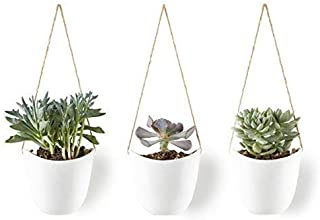 Best cheap wall planters Reviews