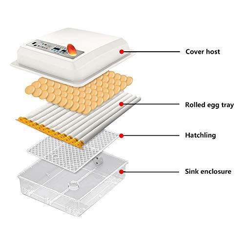 InLoveArts digital Ei-Inkubator 16 Eier Automatischer Brutapparat für den Heimgebrauch, Temperaturregelung und automatisches Drehen für mehrere Eigrößen - 6