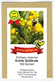 Echte Goldrute - Solidago virgaurea - alte Zier- + Arzneipflanze - 150 Samen