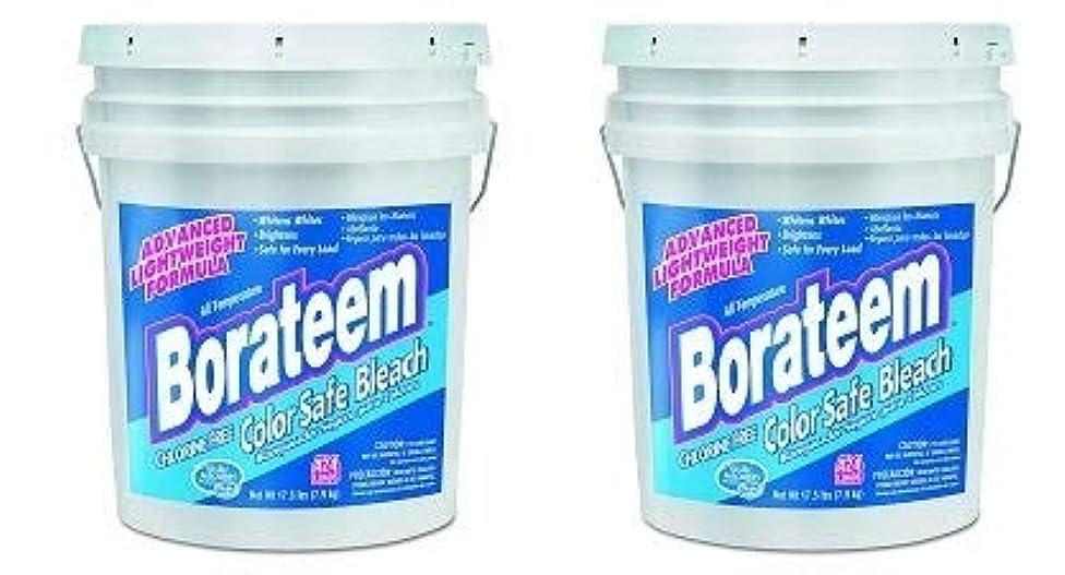 Borateem 00145 5 Gallon Chlorine-Free Color Safe Laundry Bleach Pail (2-(Pack))
