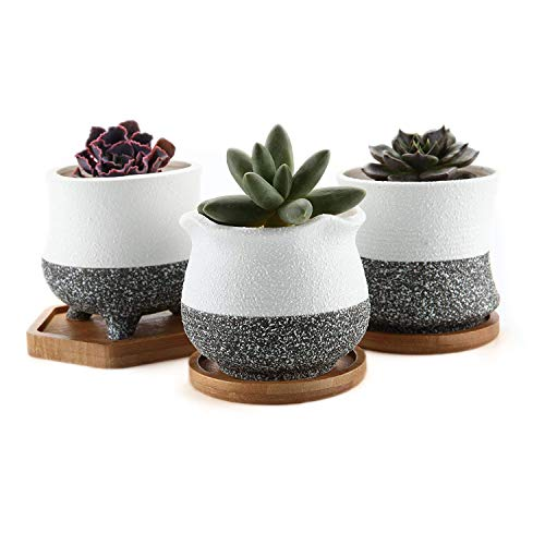 T4U 3.5 Inch Ceramic Succulent Cactus Planters - Set of 3, Korean Style Succulent Clay Pots with Bamboo Tray