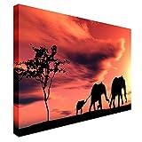 Qbbes, elefante africano atardecer paisaje moderno lienzo arte de pared impresión de imagen-24x20inch(60x50cm)Framed