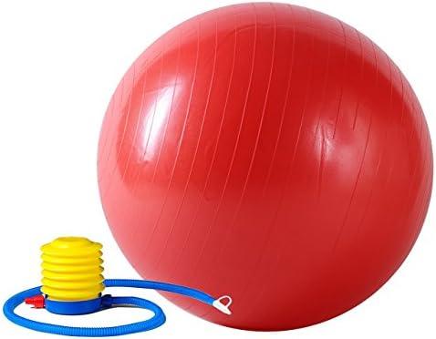 Sunny Health Fitness Anti Burst Gym Ball 55 CM product image