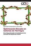 Optimización Basada en Colonias de Hormigas: Un enfoque basado en la distribución de extractos de tarjetas de crédito