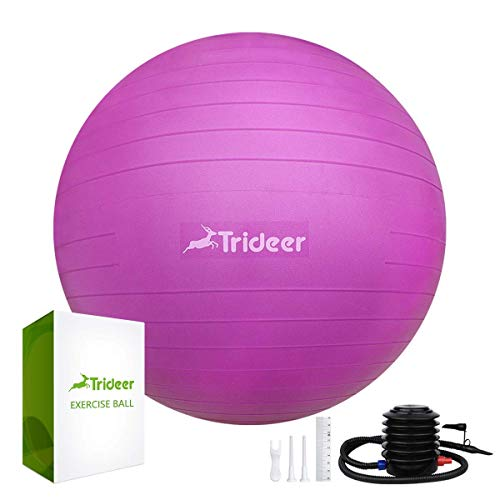 Trideer Exercise Ball (45-75cm) Extra Thick Yoga Ball Chair, Anti-Burst Heavy Duty Stability Ball Supports 2200lbs for Pilates Fitness Pregnancy, Birthing Ball with Quick Pump (Fuchsia, L (58-65cm))