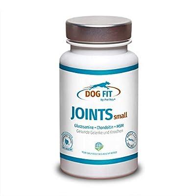 DOG FIT by PreThis® Joints small | Premium Gelenkpräparat für Hunde | 3 Größen | Bei Gelenkschmerzen, zur Vorbeugung & Stärkung der Gelenke | Glucosamin, Chondroitin, MSM Gelenknahrung Hund