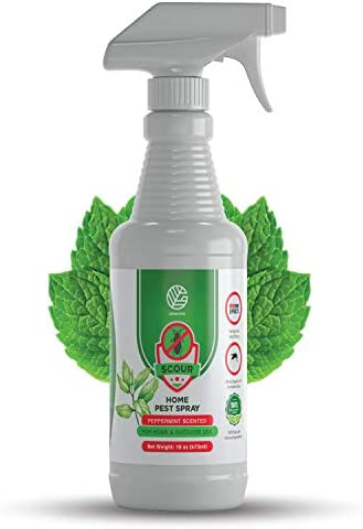 GERMOFIN Scour Organic Home Pest Control Spray Peppermint Oil Kills Repels Ants Roaches Spiders product image