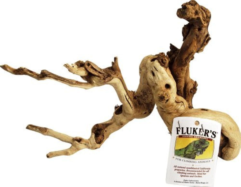 Fluker's Iguana Branch by Fluker's