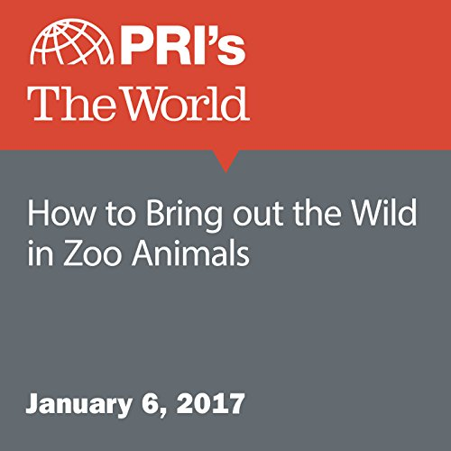 How to Bring out the Wild in Zoo Animals audiobook cover art