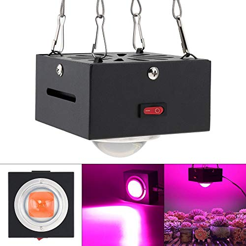 Plantenlamp Grow Light volledig spectrum plantenlamp 300 Watt waterdicht Cob LED groeilicht met shell volspectrum indoor LED-lamp planten kweken doos tent bloemen zaailingen kieming