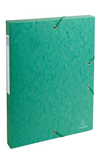 Exacompta 50303E - Carpeta de proyecto con goma, color verde