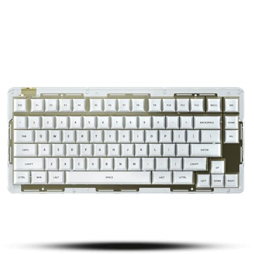 IDOBAO id80 Crystal Keyboard Kits with Led RGB Light PCB Hot-swap Transparent Acrylic Material White and Black Blank Base for Beginner DIY Mechanical Keyboard Windows Mac OS PC System (White)