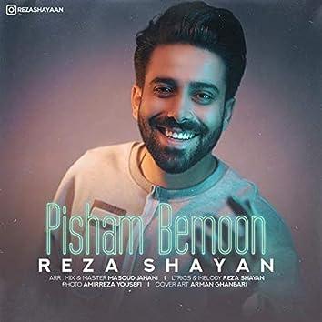 Pisham Bemoon