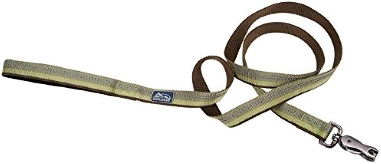 Coastal Pet Products DCP36406FRN K9 Explorer 5 8Inch Leash for Dogs, 6Feet, Fern