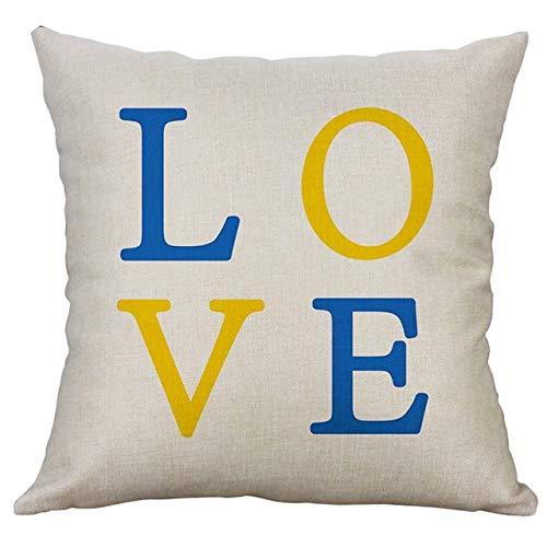 RAQ kussen van hoge kwaliteit, eenvoudig linnen, creatief, betoverend sierkussen voor bank, kussen met persoonlijkheid, 45 x 45 cm C
