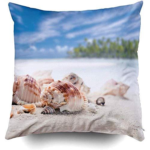 IUBBKI 1 funda de almohada de 18 x 18 pulgadas, fundas de almohada para sofá, linda tortuga de mar bajo el agua, anémona, peces, animales de acuario, telón de fondo de playa, mariposas, carto
