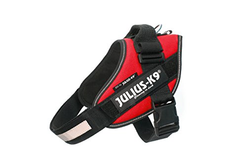 Julius-K9 IDC Powerharness for Dogs with Two Free Custom Patches, Red Size 0