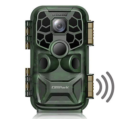Campark Wildkamera WLAN 24MP 4K Lite Bluetooth Jagdkamera mit Bewegungsmelder Nachtsicht 20m, Wildtierkamera mit 2,4 Zoll LCD-Bildschirm IP66 Wasserdichtfür Jagd und Tierbeobachtung