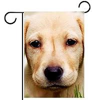 ガーデンサイン庭の装飾屋外バナー垂直旗かわいいゴールデンレトリーバーの子犬 オールシーズンダブルレイヤー