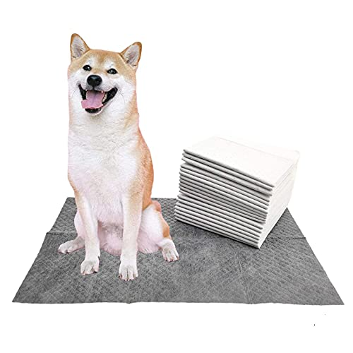 BEIGEFAMU Pets Charcoal Wee Pads | Puppy Potty Odor-Control Training Pads | Super-Absorbent Urine,Leak 5 Layer-Proof Puppy Pee Pads for Dog(40counts,2424in)