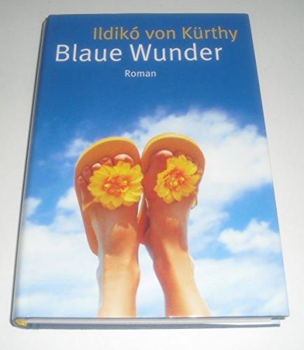 Blaue Wunder : Roman ;