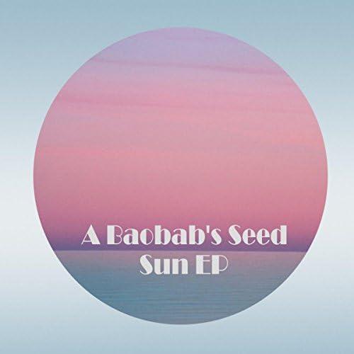 A Baobab's Seed