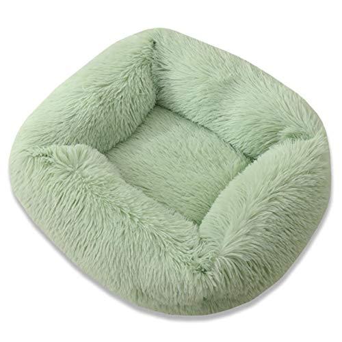 CCLIN Hundebett Langes Plüsch Einfarbige Haustierbetten Katzenmatte Für kleine mittelgroße Haustiere Superweiche winterwarme Schlafmatten, grün, 55x45x20cm