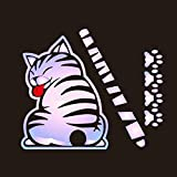 Meitinalife 3D Car Decals and Stickers Cartoon Funny Cat Moving Tail Stickers Windshield Wiper Decals Car Styling Window Wiper Decals Tags for Rear Wipers (Dazzle)