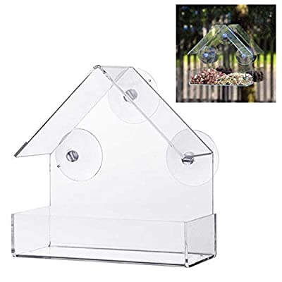 Clear Glass Window Viewing Bird Feeder Hotel Table Seed Peanut Hanging Suction by HSI