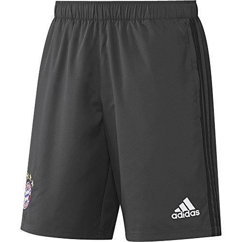 adidas Herren FC Bayern München Shorts, DGH Solid Grey, XL