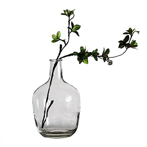 BUICCE Jarrón de cristal transparente moderno para decoración de plantas de hierba de Pampas, ramas redondas, grandes...