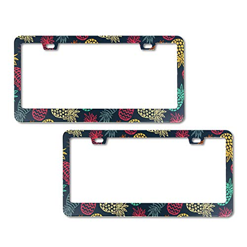 EXMENI 2 PCS Rainbow Pineapples License Plate Frame Theft-Proof Frames Stainless Steel Board Frames