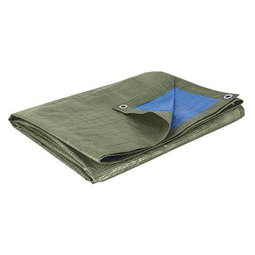 Cogex 82303 Bâche couverture 150 g 2 x 3 m