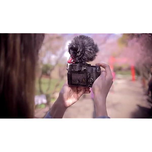 Rode VideoMicro - Microfono Direzionale Compatto per fotocamere DSLR, videocamere e registratori audio portatili, Jack 3,5 mm, Colori assortiti, 1 pezzo 7 spesavip