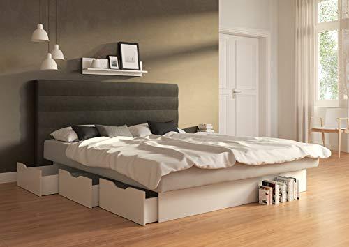 SuMa - Wasserbett doppelt 200x220 dual Schubkastenbett mit 6 Fächern weiß und Kopfteil Largo, Farbe Carbon 200x220 cm - 11 Farben wählbar