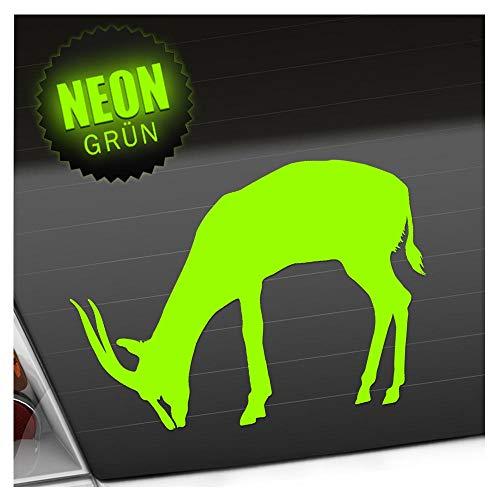Antilope Gazelle 14 x 13 cm en 15 couleurs – Fluo + Chrome. Autocollant