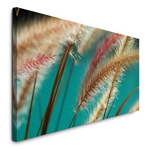 Paul Sinus Art GmbH Ähren vom Brunnengras 120x 50cm Panorama Leinwand Bild XXL Format Wandbilder Wohnzimmer Wohnung Deko Kunstdrucke