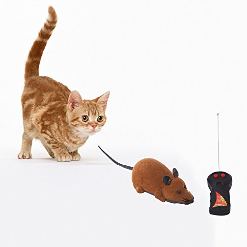 Dairyshop KatzenSpielzeug, 1 gesetztes lustiges RC drahtloses Fernsteuerungs Ratten Maus Spielzeug für Haustier Katze Hund-Spiel, das nett, Plastik ist (braun)