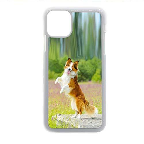 Generic Parachoques para niña compatible con Samsung Galaxy S 20 Plus Carcasa Carcasa Carcasa Abs Estampado Collie