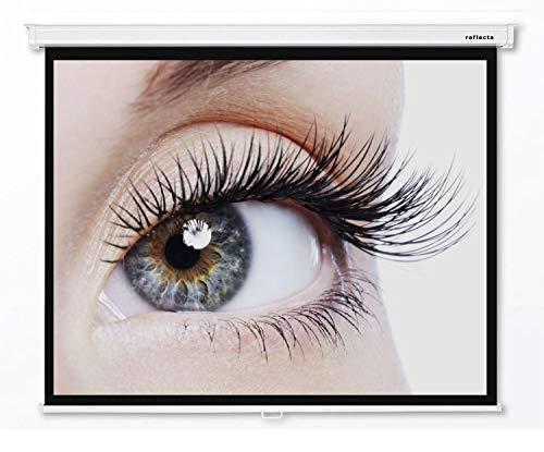 Reflecta CrystalLine Schermo manuale di proiezione 300 x 233 cm - Formato 4:3 - Lunghezza alloggiamento 315 cm - Full HD - 3D - 4K - HDTV - montaggio a parete e a soffitto - 1.0 Gain