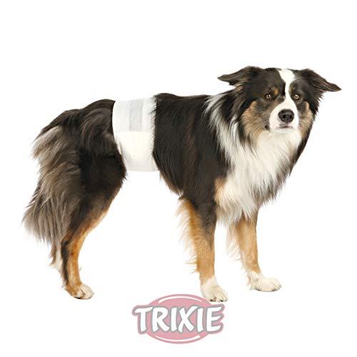 TRIXIE 2X Rüdenwindeln, Hundewindeln - Einwegwindeln, 12 Stück (S-M, 30-46cm)