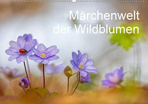 Märchenwelt der Wildblumen (Wandkalender 2021 DIN A2 quer)