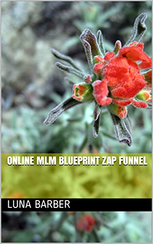 Online MLM Blueprint Zap Funnel (English Edition)