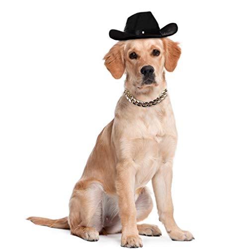 WODISON Cool Pet Dog Cat Cowboy Costume Hat and Fashion Metal Chain Collar Set